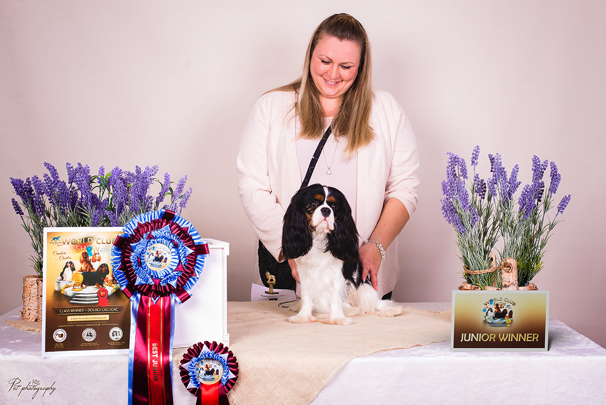 World Club Show Best Junior in Show